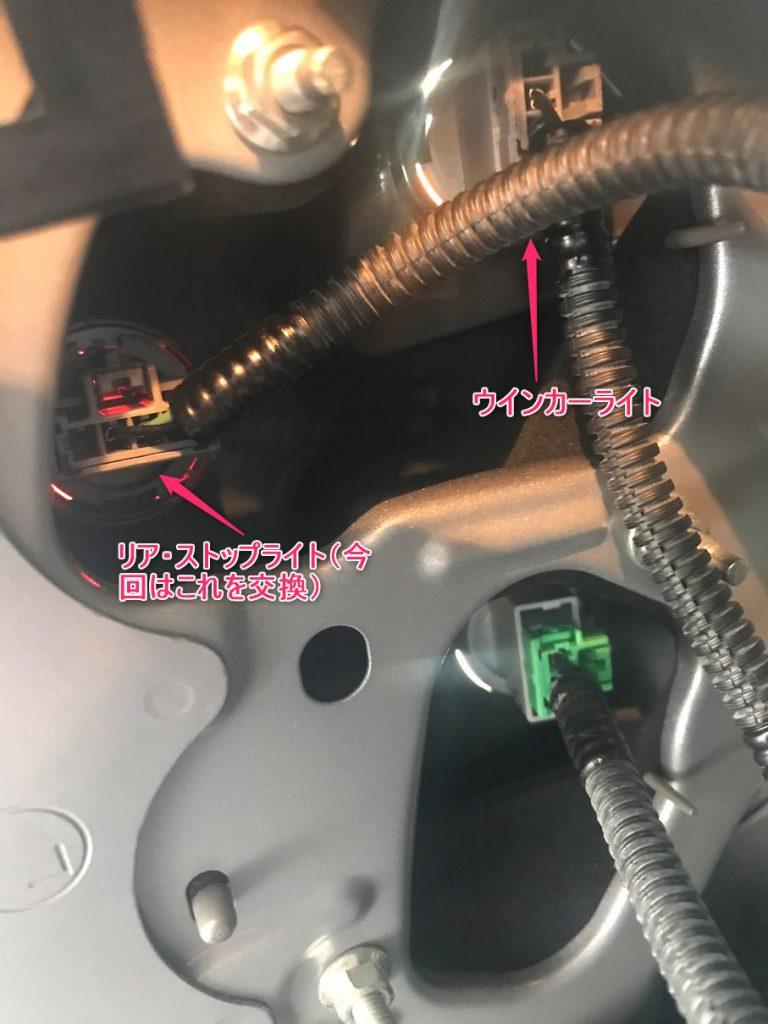 トランク内から見たリアランプ